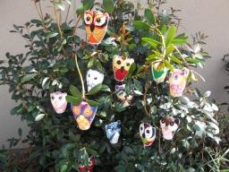 613 Owls in bush