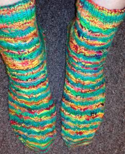 Deanne's Earlybird socks