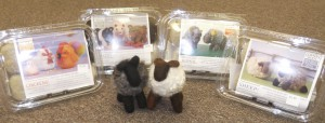 Needle-felting Kits